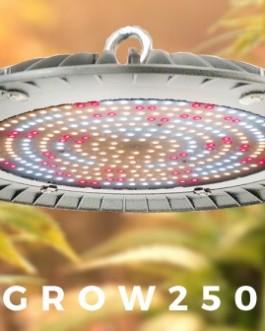 Grow-251